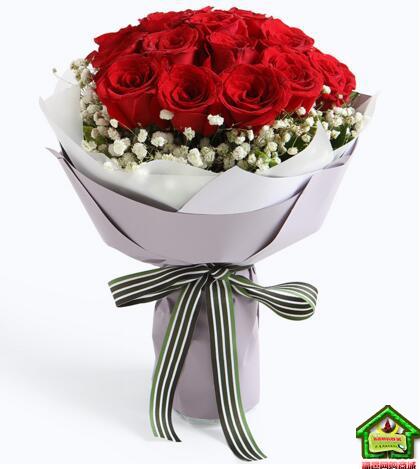 牵手一生--红玫瑰19枝