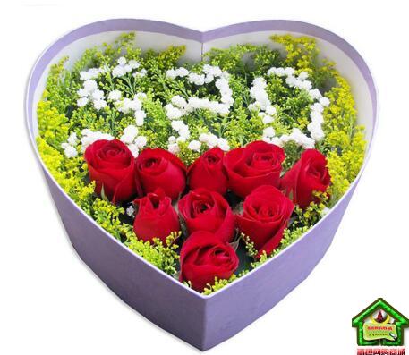 我爱你!520鲜花----9支红玫瑰