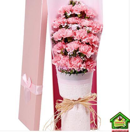 母爱知心 19枝粉色康乃馨,间插