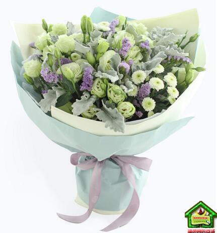 巨蟹座守护花--巨蟹座鲜花定制款:绿色洋桔梗1扎、银叶菊1扎 巨蟹座鲜花定制款