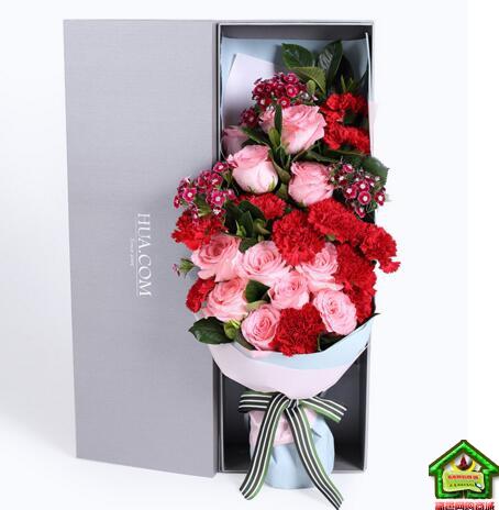 馨情无限--戴安娜玫瑰11枝,红