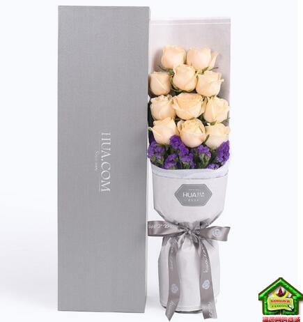 恰似你的温柔--精品玫瑰礼盒,香槟玫瑰11枝、深紫色勿忘我