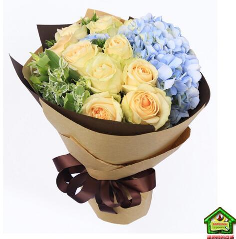 浪漫满屋--香槟玫瑰11支,浅蓝色绣球1枝