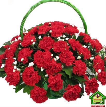 无私关爱 --33枝红康乃馨,栀子叶、满天星间插手提花篮