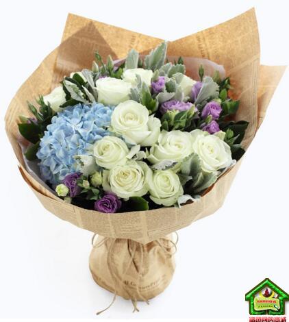 金牛座守护花--白玫瑰11枝、浅蓝绣球1枝、浅紫色洋桔梗5枝 金牛座鲜花定制款