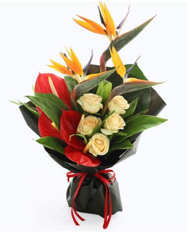 狮子座守护花--天堂鸟3枝、香槟玫瑰5枝、红掌4枝 狮子座鲜花定制款