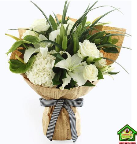 摩羯座守护花--绿掌3枝、白百合3枝、白玫瑰8枝 摩羯座鲜花定制款