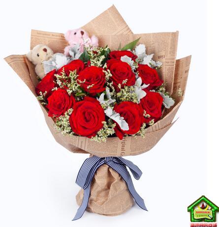 只想爱你/11枝--红玫瑰11枝、银叶菊0.3扎、小熊公仔1对