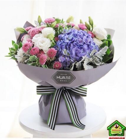 双鱼座守护花--蓝色绣球1枝,紫色小雏菊4枝  双鱼座鲜花定制款