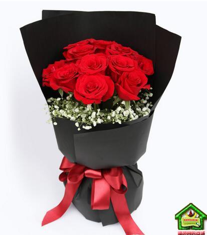 钟爱一生-红色玫瑰11枝,满天星