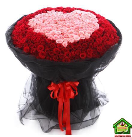 心的悸动-就是爱你----520支精品玫瑰