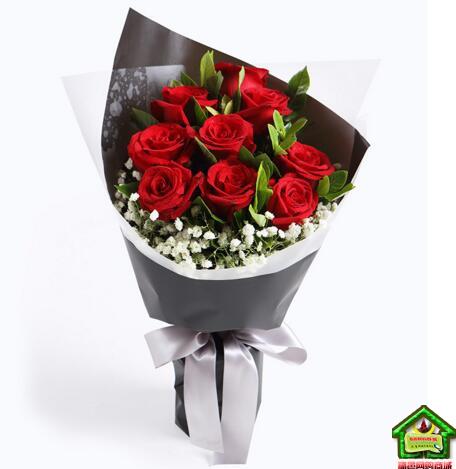 就是爱你--红玫瑰9枝,搭配栀子叶满天星适量