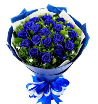 深爱----19支蓝玫瑰,黄莺