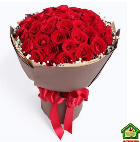 158元【秒杀】520特供:爱你到永远33枝昆明A级红玫瑰
