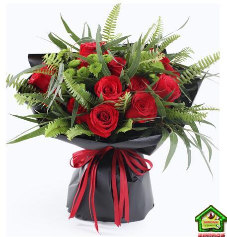 天蝎座守护花--红玫瑰19枝、绿色小雏菊4枝  天蝎座鲜花定制款